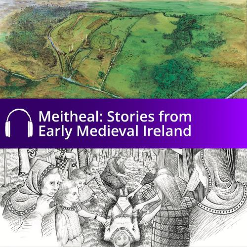 Cover of Meitheal audio book