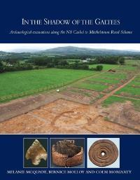 Cover of book entitled In the Shadow of the Galtees